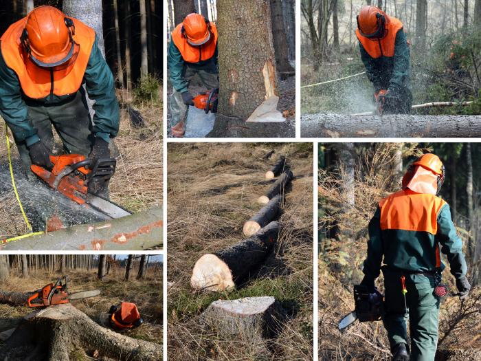 Woodcutter forest work chainsaw composite set